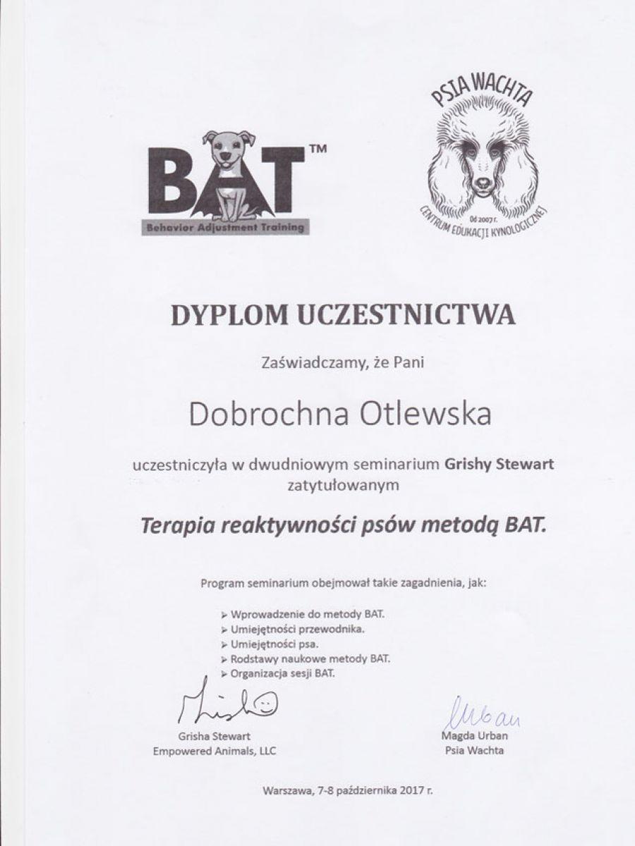 bat0B40FF7A-9A31-B505-E67C-E50C0EE149D3.jpg